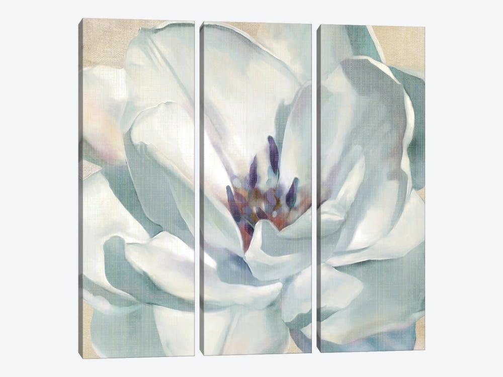 Iridescent Bloom II by Carol Robinson 3-piece Canvas Art Print
