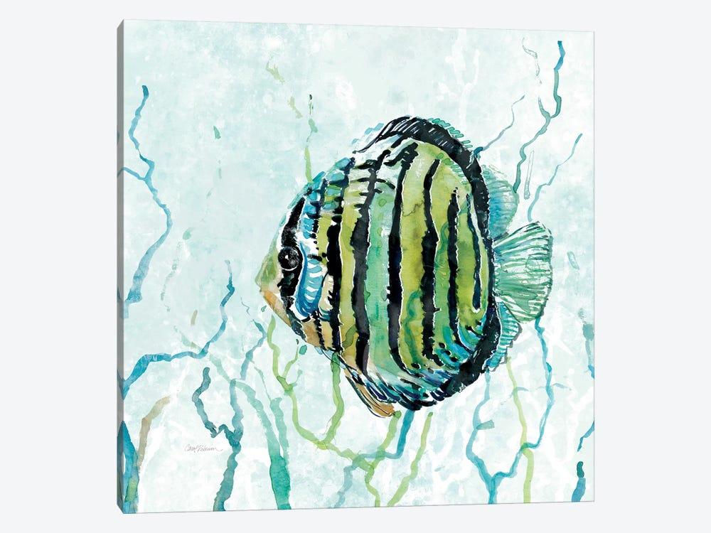 Outer Banks Swim by Carol Robinson 1-piece Canvas Art