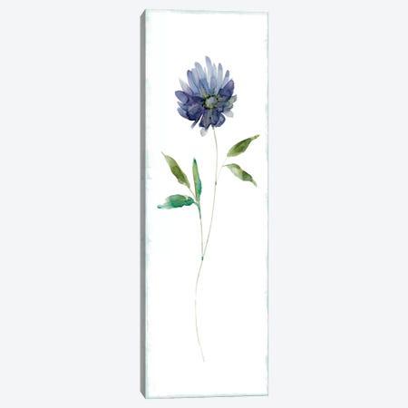 Plum Garden II Canvas Print #CRO166} by Carol Robinson Art Print