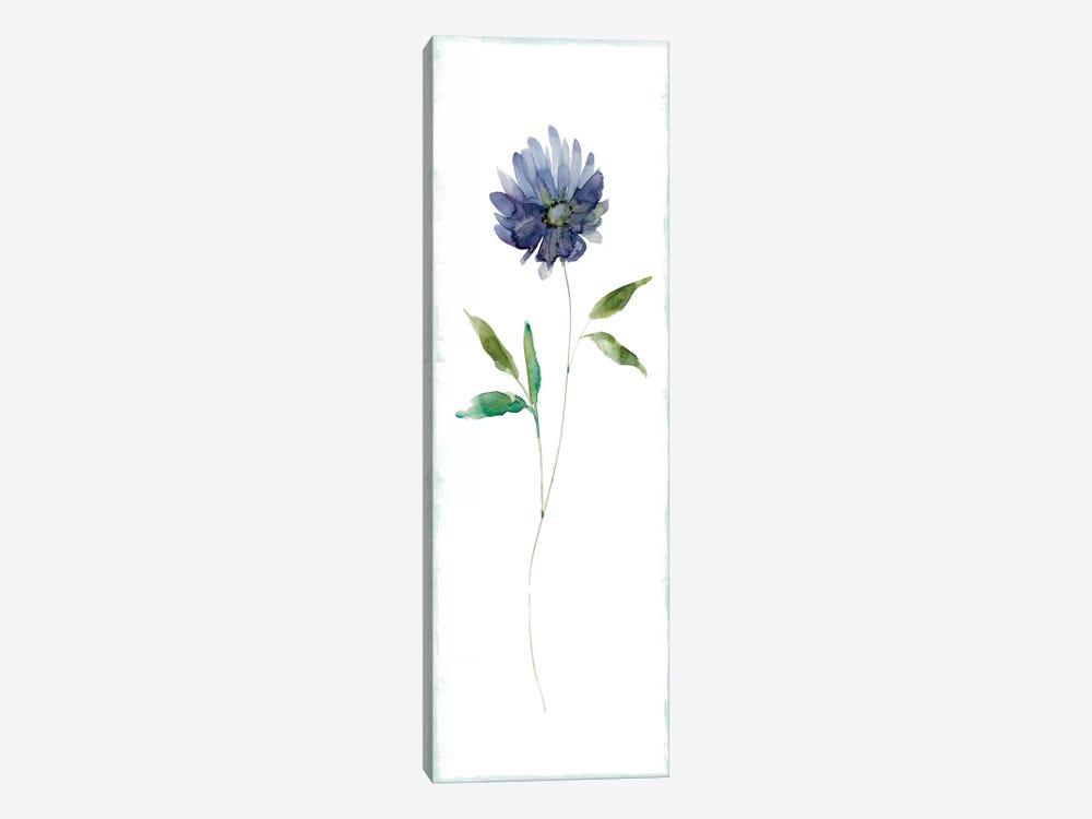 Plum Garden II by Carol Robinson 1-piece Canvas Wall Art