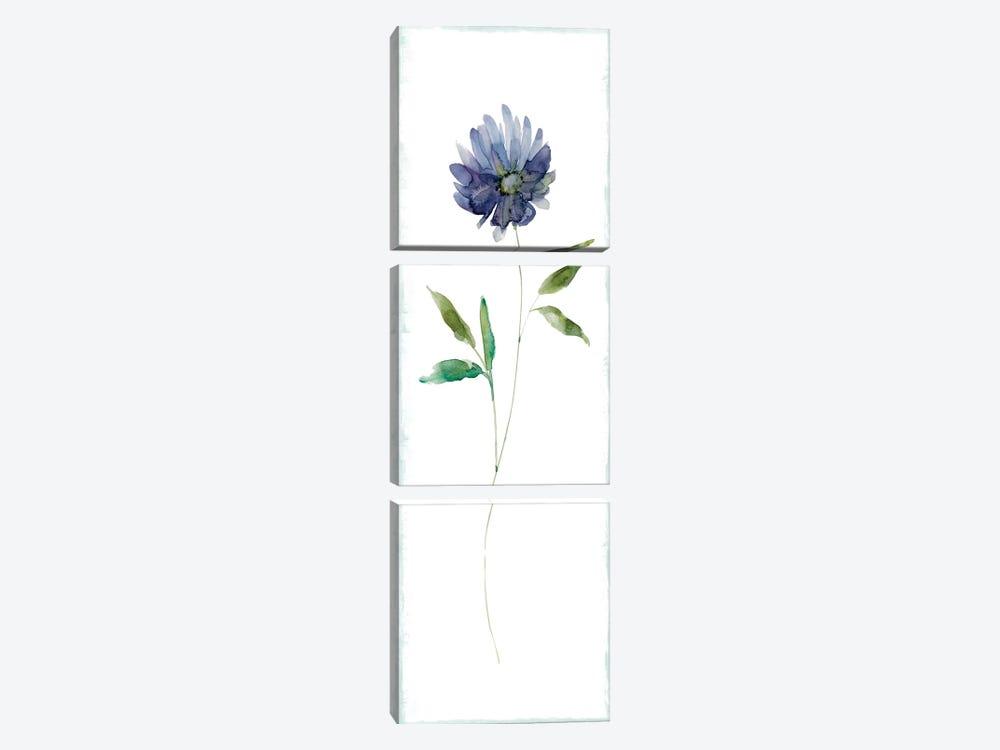 Plum Garden II by Carol Robinson 3-piece Canvas Artwork