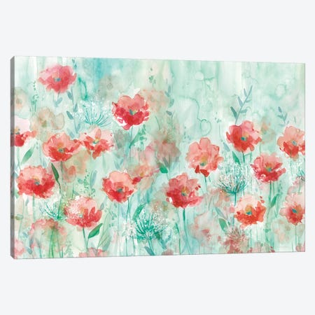 Poppies and Queen Anne Canvas Print #CRO167} by Carol Robinson Canvas Art Print