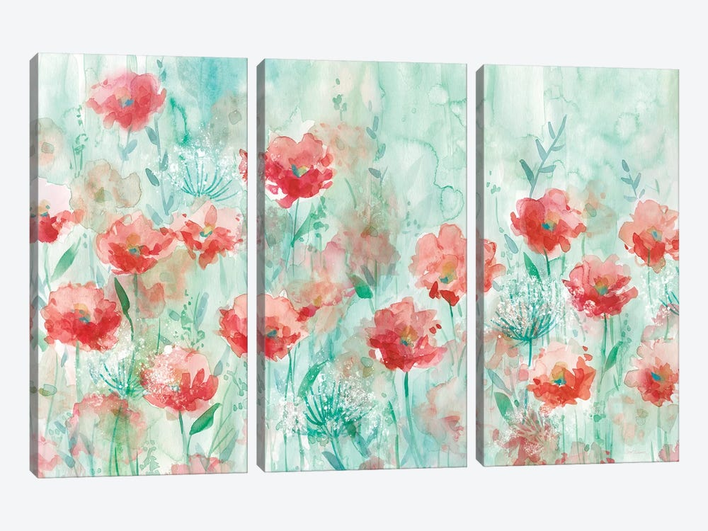 Poppies and Queen Anne by Carol Robinson 3-piece Art Print
