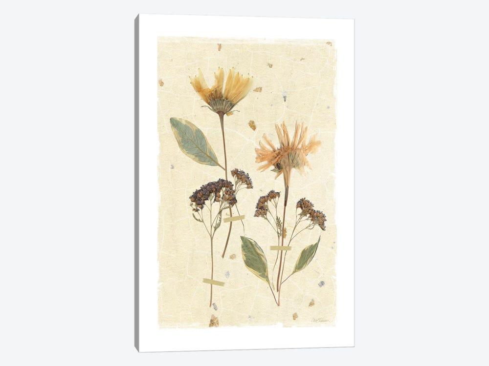 Pressed Daisies by Carol Robinson 1-piece Canvas Artwork
