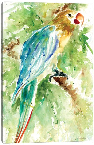 Island Beauty I Canvas Print #CRO16