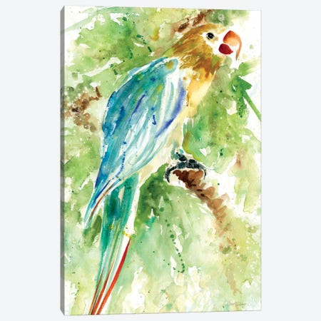 Island Beauty I Canvas Print #CRO16} by Carol Robinson Canvas Wall Art