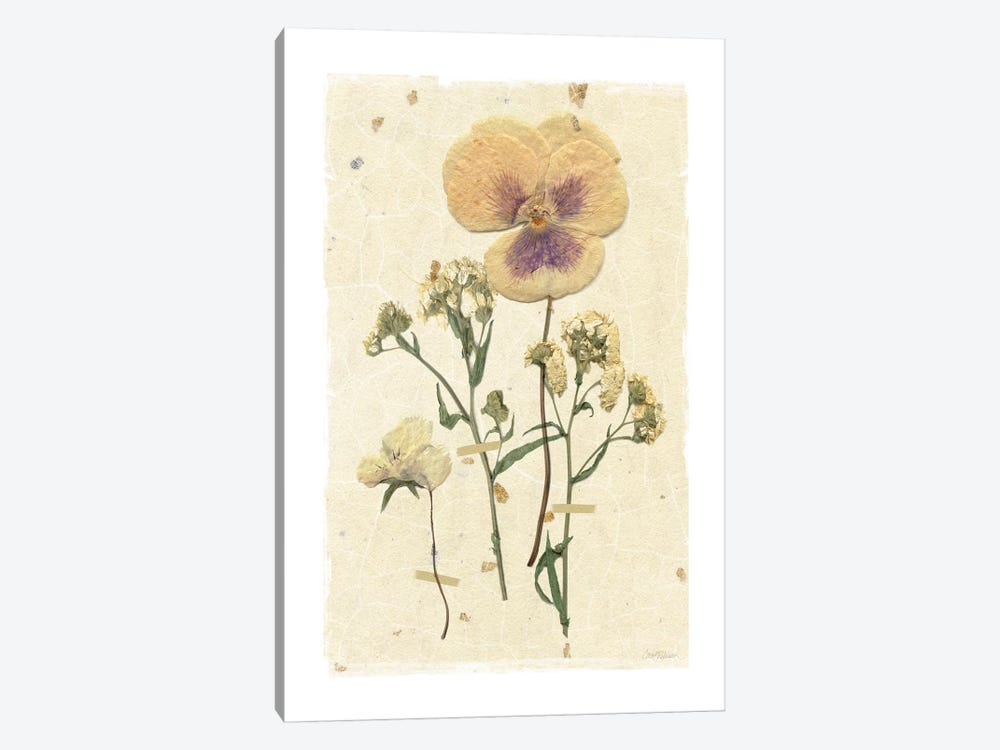 Pressed Pansy by Carol Robinson 1-piece Art Print