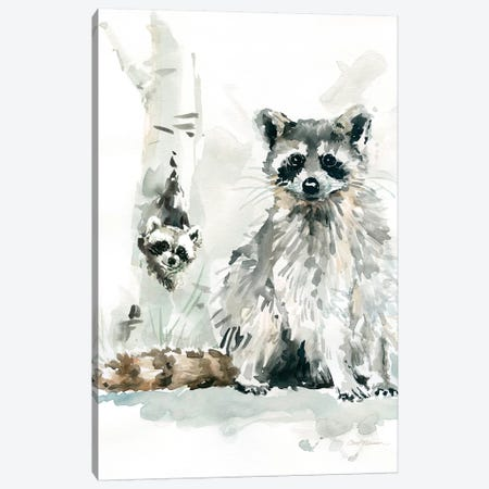 Raccoon and Baby Canvas Print #CRO173} by Carol Robinson Canvas Art Print