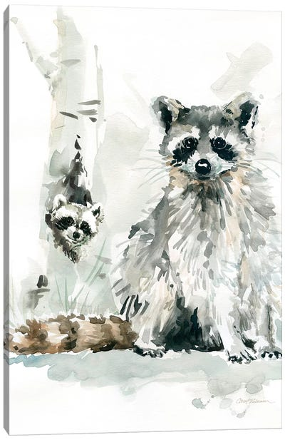 Raccoon and Baby Canvas Art Print
