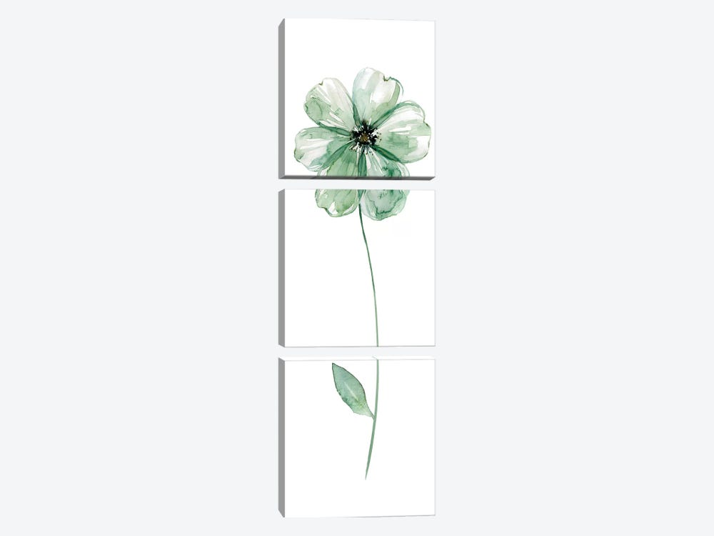 Sage Flower I by Carol Robinson 3-piece Canvas Wall Art