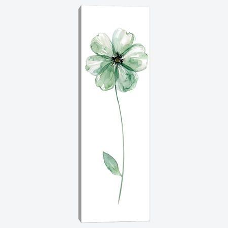 Sage Flower I Canvas Print #CRO175} by Carol Robinson Canvas Artwork