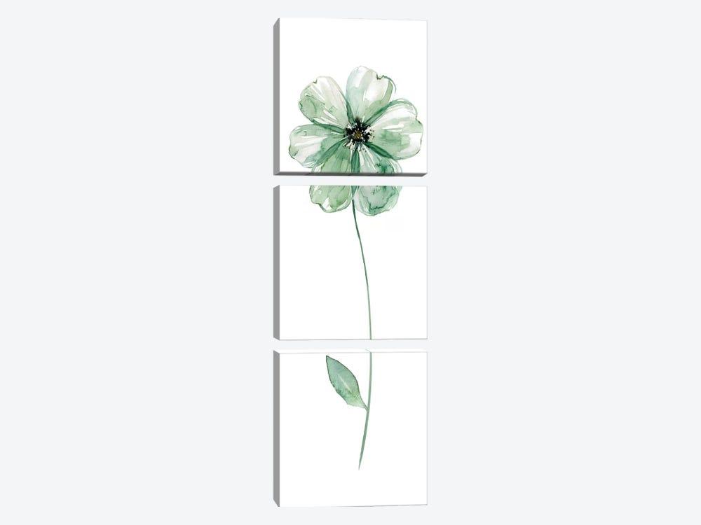 Sage Flower I by Carol Robinson 3-piece Canvas Wall Art