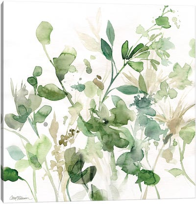 Sage Garden I Canvas Art Print