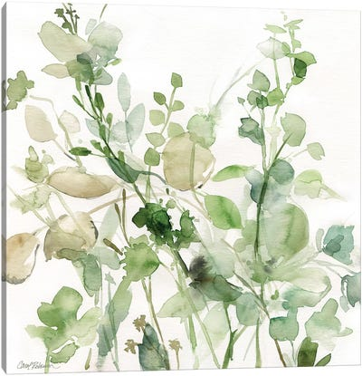 Sage Garden II Canvas Art Print