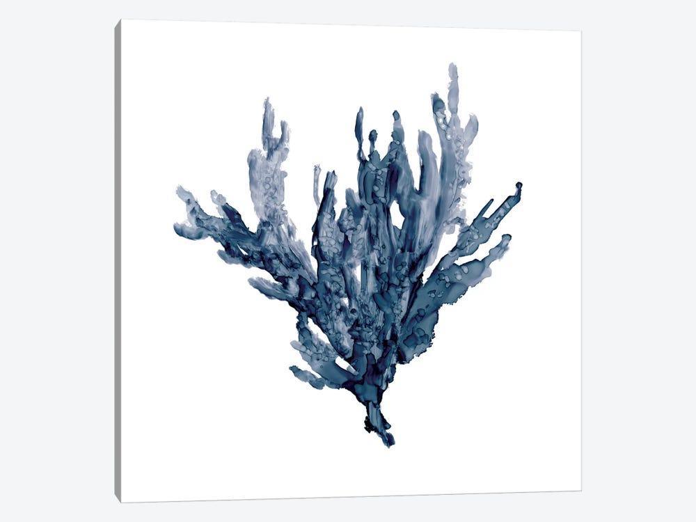 Sea Coral I by Carol Robinson 1-piece Canvas Artwork