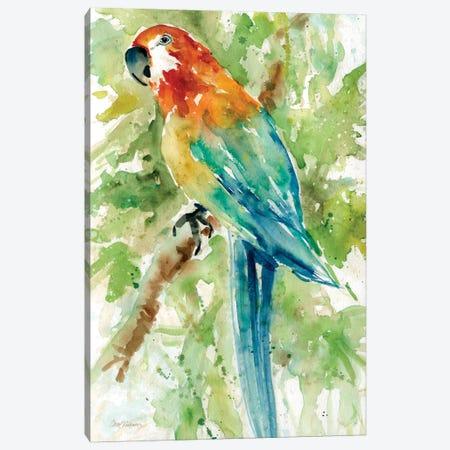 Island Beauty II Canvas Print #CRO17} by Carol Robinson Canvas Artwork