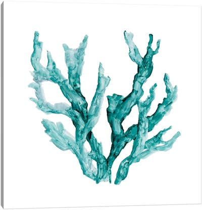 Sea Coral II Canvas Art Print