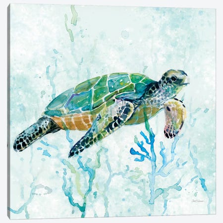 Sea Turtle Swim I Canvas Print #CRO182} by Carol Robinson Canvas Wall Art