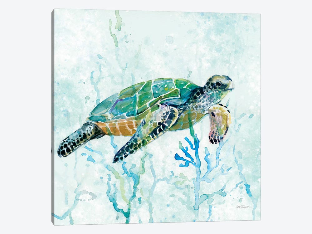 Sea Turtle Swim I by Carol Robinson 1-piece Canvas Wall Art