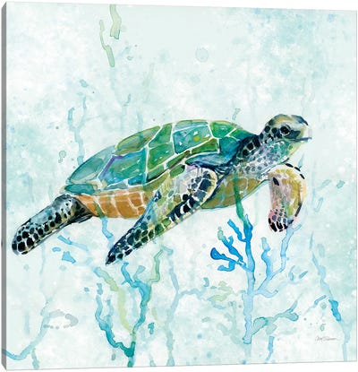 Sea Turtle Swim I Canvas Art Print