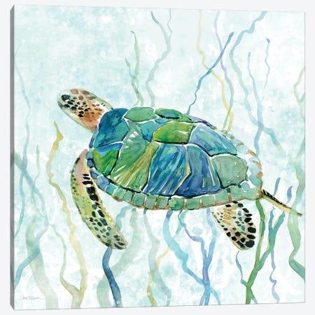 Sea Turtle Swim II Canvas Print #CRO183} by Carol Robinson Canvas Art