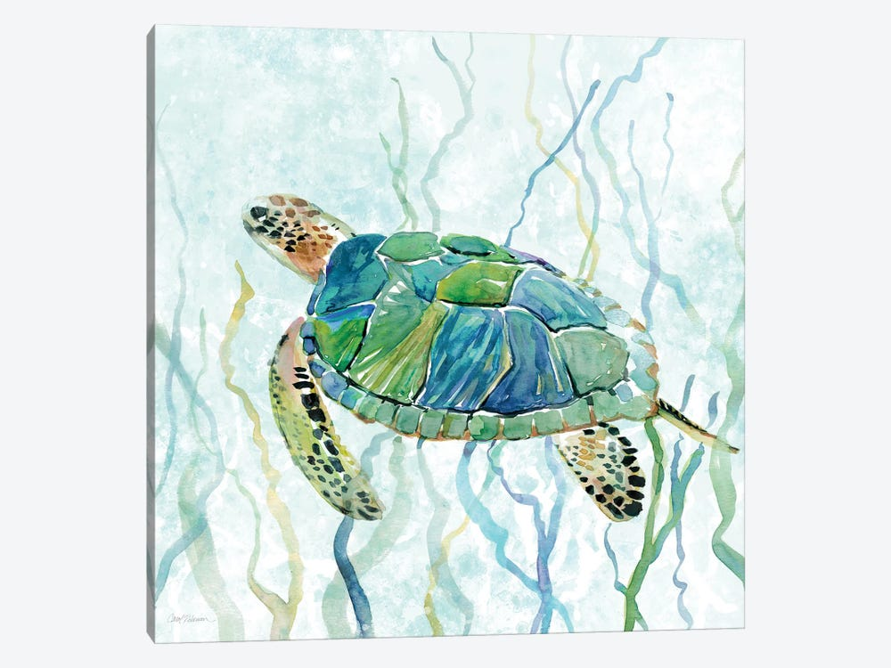 Sea Turtle Swim II by Carol Robinson 1-piece Canvas Art Print