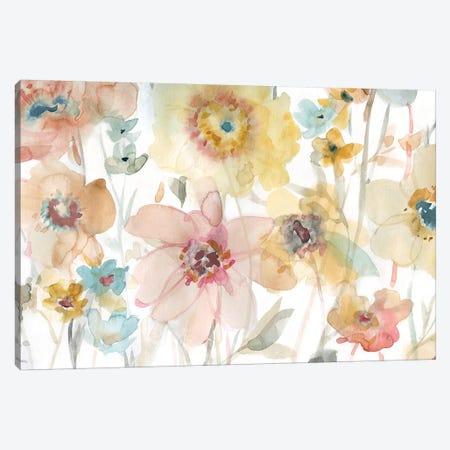 Soft Spring II Canvas Print #CRO187} by Carol Robinson Art Print