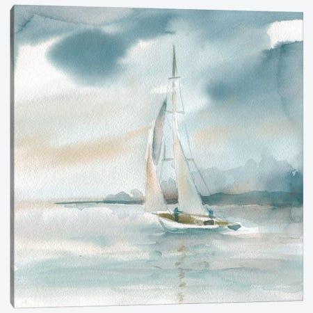 Subtle Mist Canvas Print #CRO188} by Carol Robinson Canvas Art