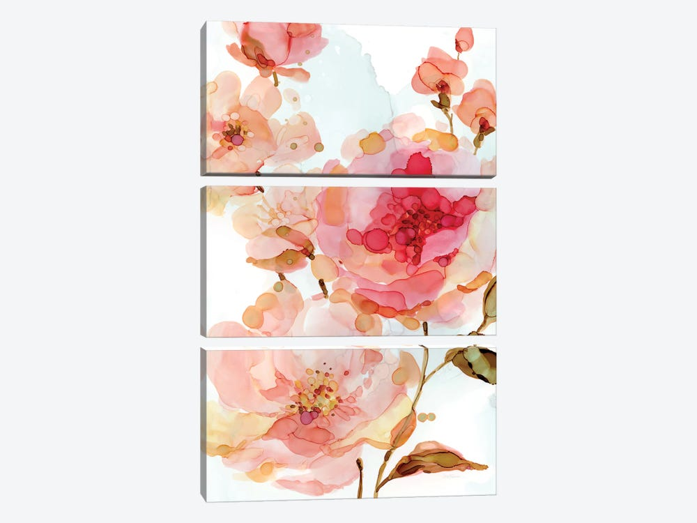 Vivid Roses by Carol Robinson 3-piece Canvas Art Print