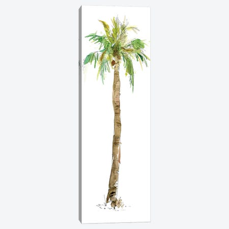 Washed Palm I Canvas Print #CRO195} by Carol Robinson Canvas Artwork