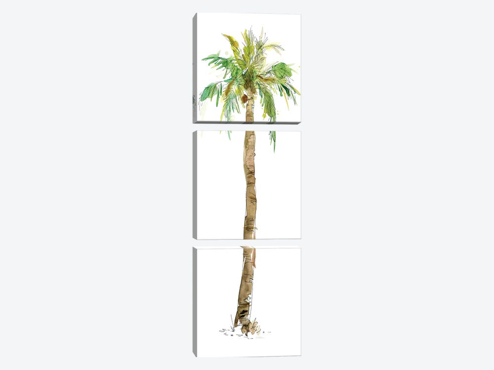 Washed Palm I 3-piece Canvas Artwork