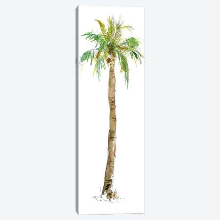 Washed Palm I Canvas Print #CRO195} by Carol Robinson Canvas Artwork