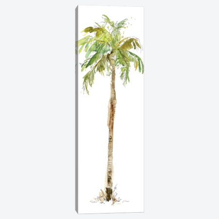 Washed Palm II Canvas Print #CRO196} by Carol Robinson Canvas Wall Art