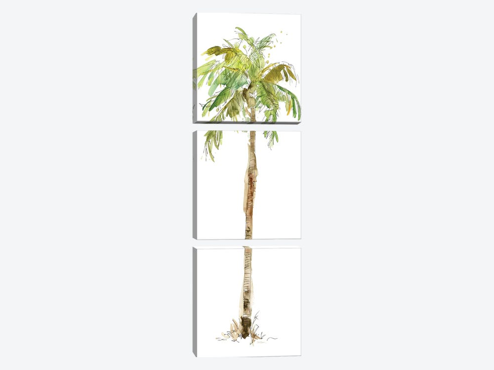 Washed Palm II 3-piece Canvas Art Print