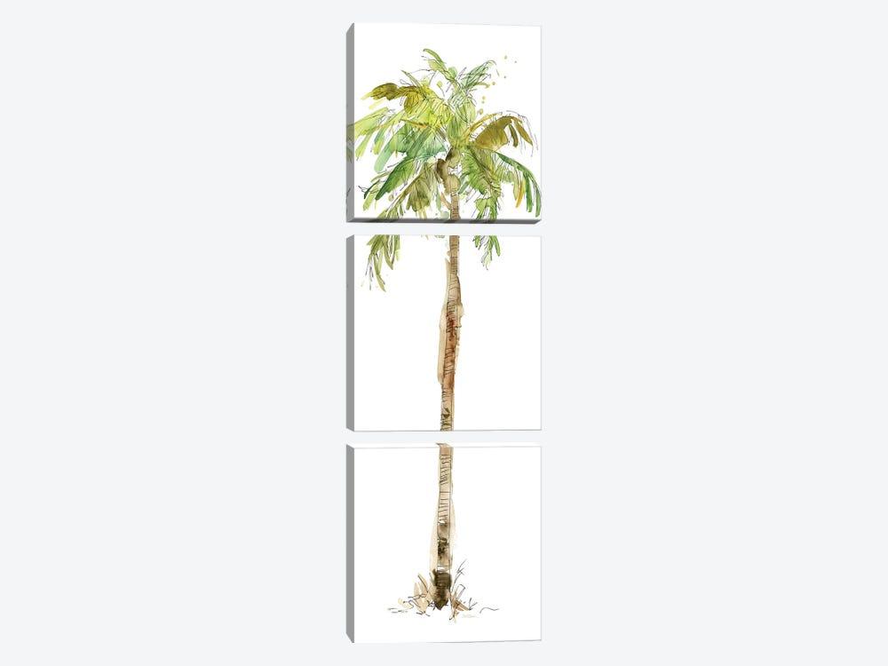 Washed Palm II by Carol Robinson 3-piece Canvas Art Print