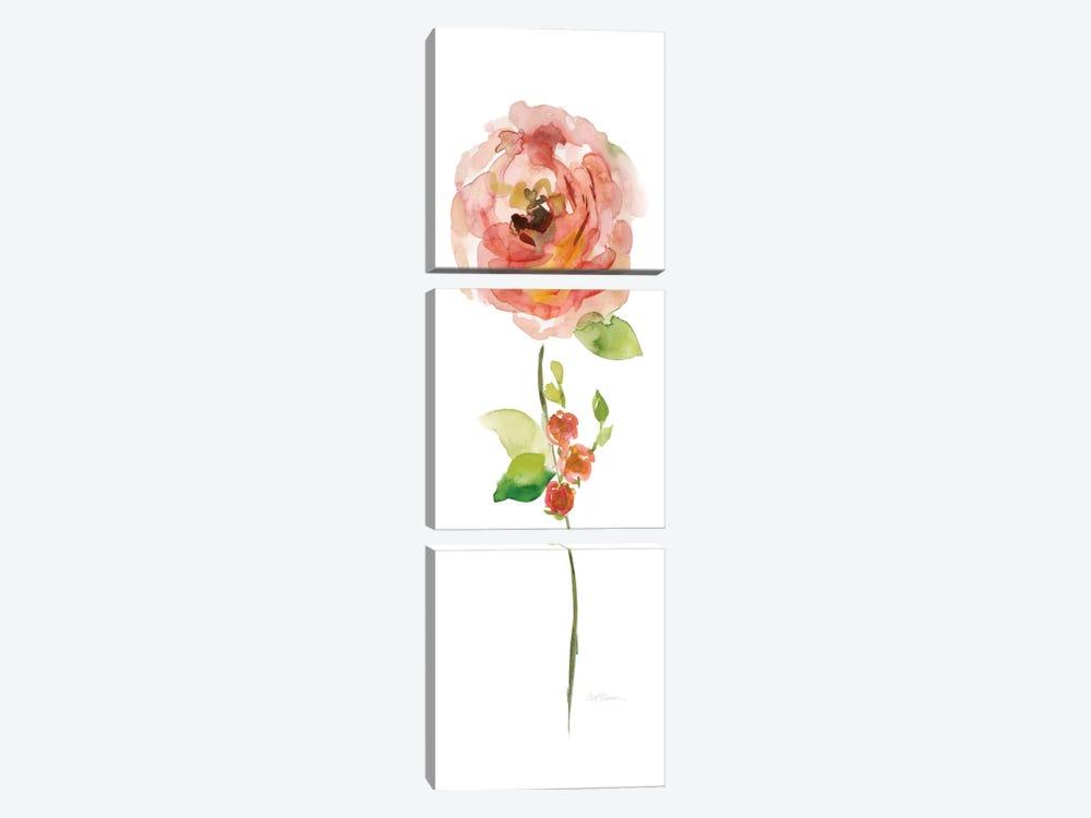 Belle Boutique III by Carol Robinson 3-piece Canvas Artwork
