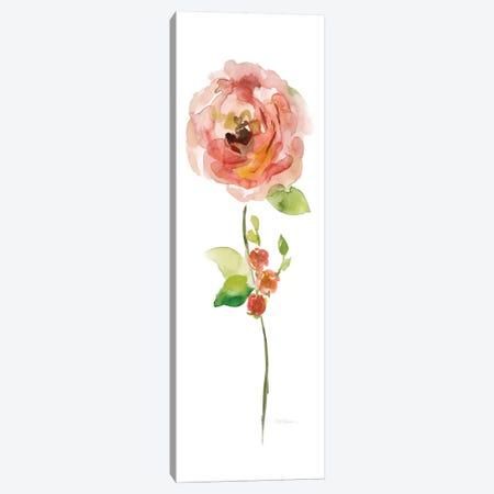 Belle Boutique III Canvas Print #CRO206} by Carol Robinson Canvas Art