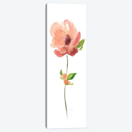 Belle Boutique VI Canvas Print #CRO209} by Carol Robinson Canvas Print