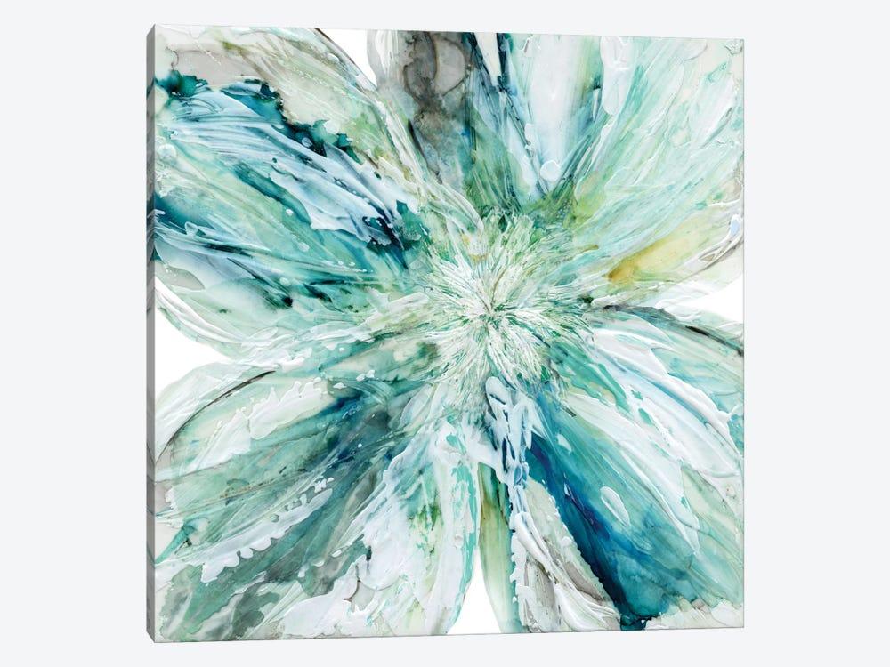 Blossom Bursts by Carol Robinson 1-piece Canvas Art