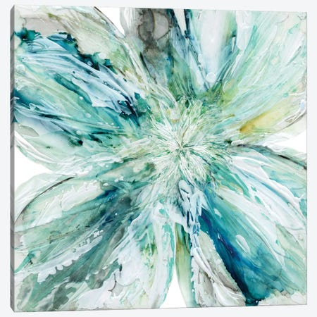 Blossom Bursts Canvas Print #CRO213} by Carol Robinson Canvas Artwork