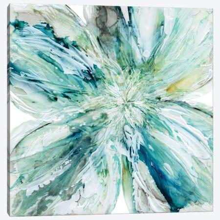 Blossom Bursts Canvas Print #CRO213} by Carol Robinson Canvas Artwork