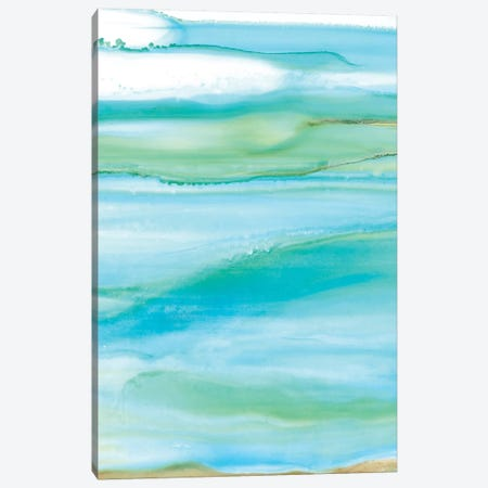 Coastal Abstract I Canvas Print #CRO220} by Carol Robinson Canvas Art Print