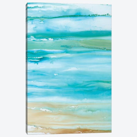 Coastal Abstract II Canvas Print #CRO221} by Carol Robinson Canvas Print