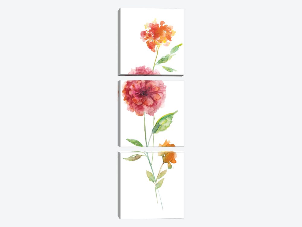 Color Wash Botanical I by Carol Robinson 3-piece Art Print