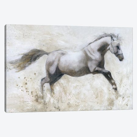 Gallop Canvas Print #CRO253} by Carol Robinson Canvas Artwork