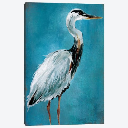 Great Blue Heron I Canvas Print #CRO260} by Carol Robinson Canvas Print