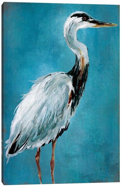 Great Blue Heron I Canvas Art Print