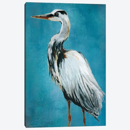 Great Blue Heron II Canvas Print #CRO261} by Carol Robinson Art Print