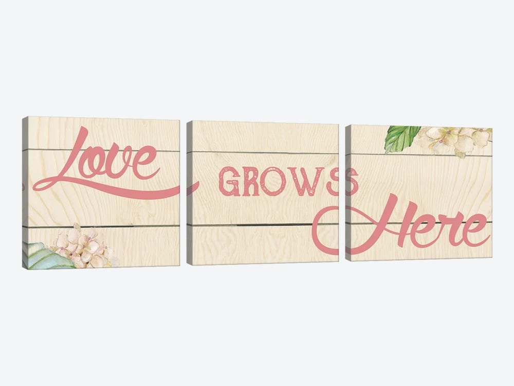 Love Grows Here I by Carol Robinson 3-piece Canvas Print