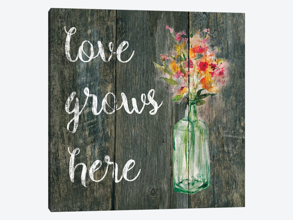 Love Grows Here II by Carol Robinson 1-piece Canvas Wall Art